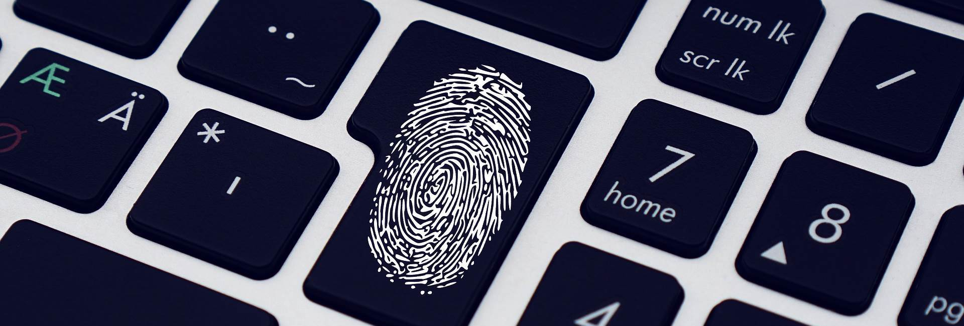 Finger print - Forensic Investigation and Consulting